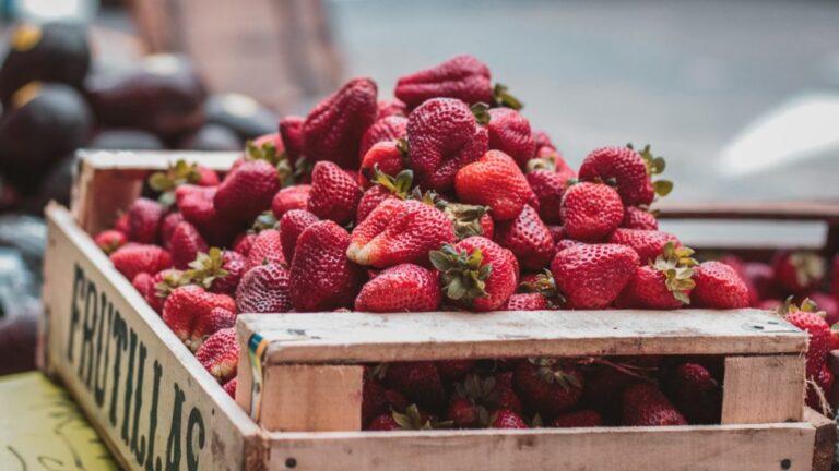 Délices aux fraises locales