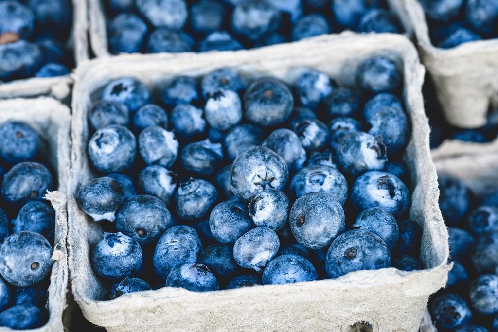 Le bleuet: Histoire, Cuisine et Auto-Cueillette