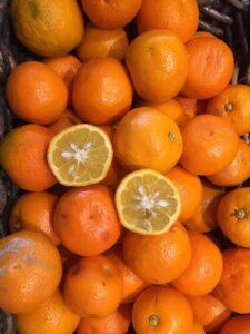 Oranges de Séville